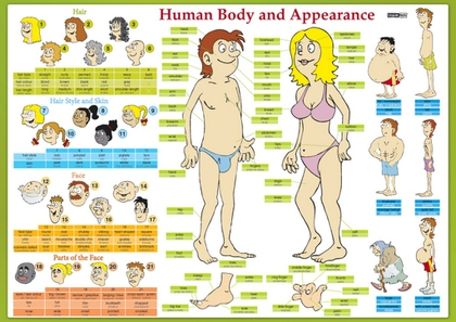 Karta Human Body and Appearance